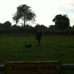 Dog Training Area